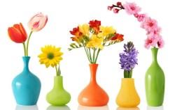 Как сохранить цветы дольше! Простой трюк, который вы можете использовать с уверенностью