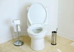 Что делать, если ваш туалет забился